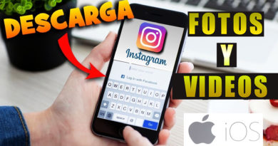 descargar fotos y videos de instagram